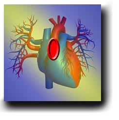 Hjärtat med klaffel