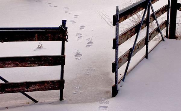 Dessa fotspår symboliserar mitt livs fortgång ut i det okända.
