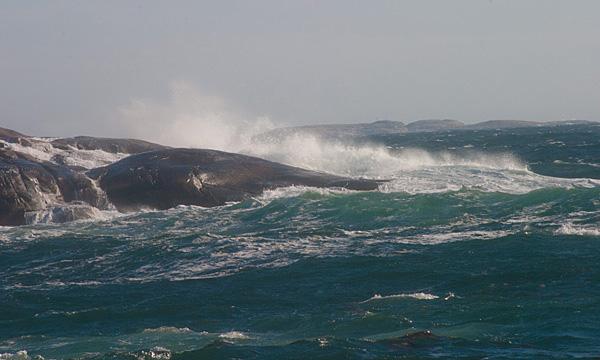 Havets kraft